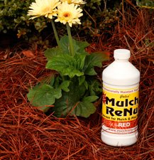 Mulch Dye: Cedar Red: 1 gallon-Bring color back into your yard with Mulch Renu(Covers 4,000 square feet)