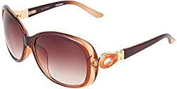 Omnesta Women's Over-sized Sunglasses (Brown) (PD083)