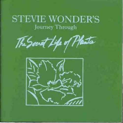Stevie Wonder - Journey Through The Secret Life Of Plants - Zortam Music