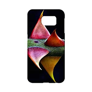 BLUEDIO Designer 3D Printed Back case cover for Samsung Galaxy S6 - G2465