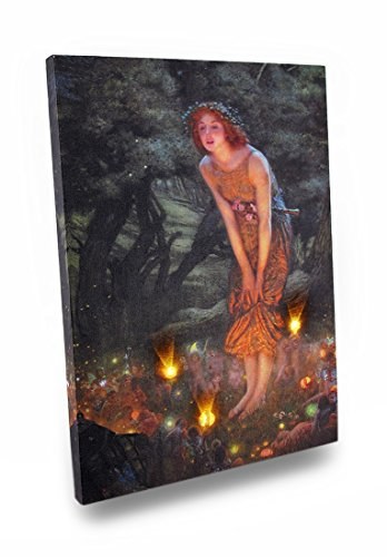 Midsummers Eve Fairy Art Led Accent Printed Canvas Wall Hanging