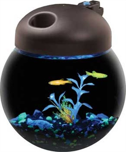 Aquarius AQ10000G 1-Gallon Glow Fish Globe Bowl Aquarium with Full Hood and 12 LED Glofish Lights