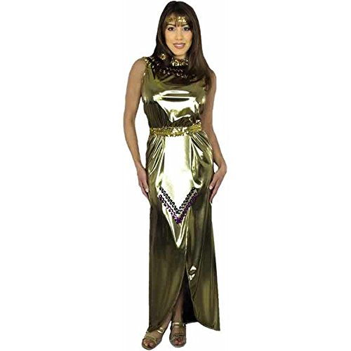Adult Lame Cleopatra Costume (Size:Medium 8-10)
