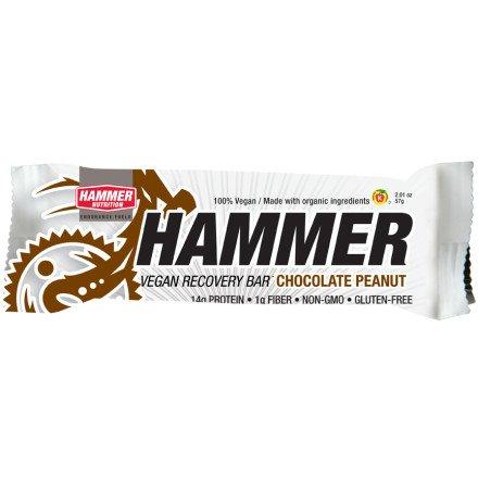 Hammer Nutrition Protein