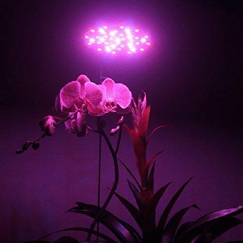 Gled® 36w Red+blue E27 LED Hydroponic Plant