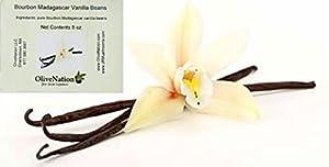 OliveNation Premium Madagascar Vanilla Beans - 1/2 lb (50-60 beans)
