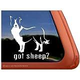 Got Sheep? Border Collie Dog Vinyl Window Auto Decal Sticker