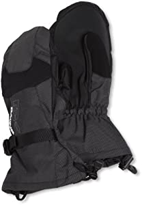 Dakine Men's Scout Mitt (Black Stripes, Large)
