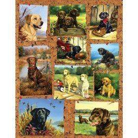 Cheap Sunsout Photo Gallery – 1000pc Jigsaw Puzzle by Sunsout (B001DOKWQO)