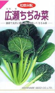 【種子】広瀬ちぢみ菜 6.1ml