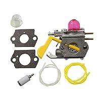 AISEN Pack of Carburetor 530-071752 530-...