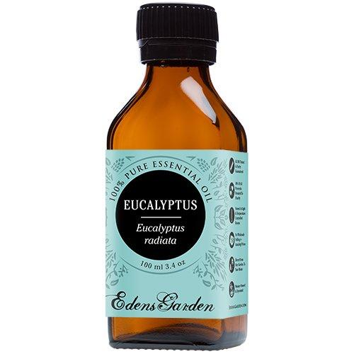 Eucalyptus Radiata 100% Pure Therapeutic Grade Essential Oil by Edens Garden- 100 ml