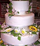 Gourmet Food Online Shop Ranking 22. Goldas Kitchen Rolled Fondant - White - 1 kg