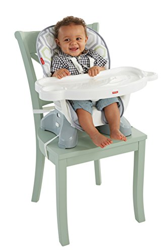 Fisher-Price SpaceSaver High Chair, Geo Meadow (Highchair Insert Pad compare prices)