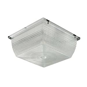 Hubbell Outdoor Lighting S9 42f 42 Watt Compact