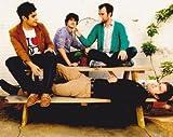 Vampire Weekend Ezra Koenig Indie Rock Music 10x8 Photograph Picture