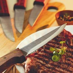 Basics 4-Pc Steak Knife Set (Walnut)