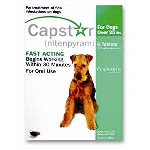 Click to buy Capstar flea control from Amazon!