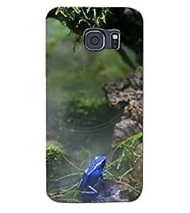 SASH DESIGNER BACK COVER FOR SAMSUNG GALXY S6 EDGE