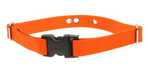 Lupine 3/4-Inch Blaze Orange 12-17-Inch Containment Collar Strap For Small To Medium Dogs