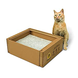 Best Sellers Supplies Amp Products For Your Cat