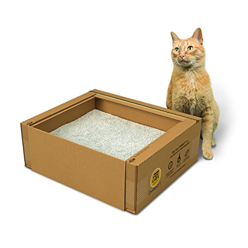 Purina Tidy Cats Direct LightWeight Clumping Cat Litter Box