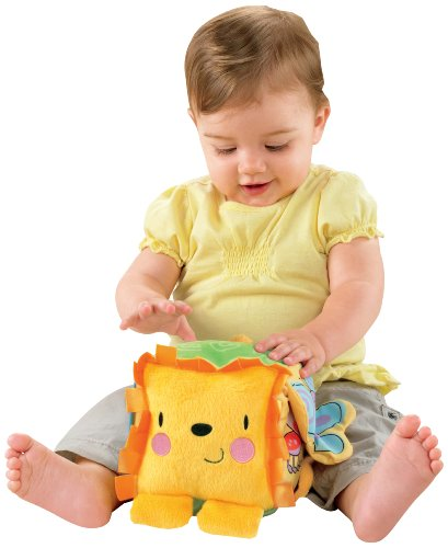 Fisher-Price Discover 'n Grow Lion Activity Block (Discontinued by Manufacturer)