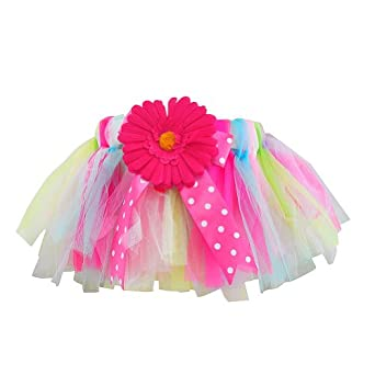 Short Rainbow Daisy Tutu