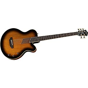 Washburn Acoustic/Electric Series AB45VSK Acoustic-Electric Bass