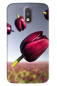 Blue Throat Pink Flower With Its Garden Printed Designer Back Cover/Case For Motorola Moto G4