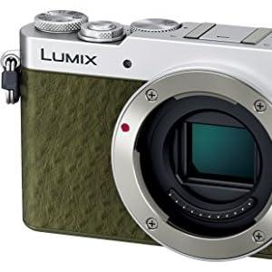 Panasonic デジタル一眼カメラ DMC-GM5-G
