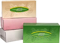 Green Forest Facial Tissue, White, Assorted Prints, Case Pack, Twenty-Four 175-Count Packs (4200 Tissues)
