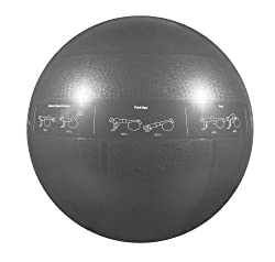 GoFit 75cm Professional Stability Ball