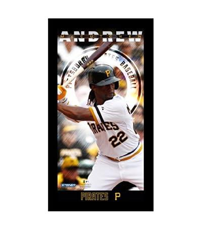 Steiner Sports Memorabilia Andrew McCutchen Pittsburgh Pirates Player Profile Framed Photo