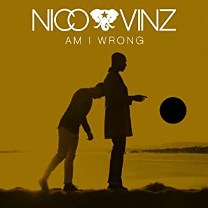 Am I Wrong by Imports