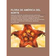 Flora de Am Rica del Norte: Panicum Virgatum, Tecophilaeaceae, Bataceae, Lactarius Indigo, Swietenia Macrophylla...