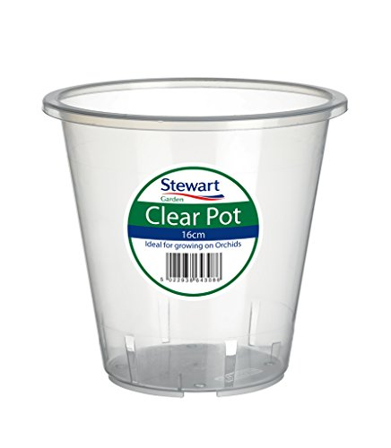 clear-orchid-pot-185cm-by-stewart-garden-products