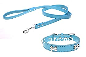 Skuleer(TM) 1 Set of Genuine Leather Polished Bone Stud Dog Collar with Matching Leash
