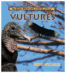 Vultures (Really Wild Life of Birds of Prey)