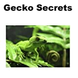 Gecko Secrets: How to Raise Happy and Healthy Gecko Lizards