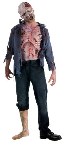 The Walking Dead TV Show Teen Deluxe Decomposed Zombie Costume, Multicolored, Teen Standard