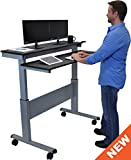 "48"" Crank Adjustable Height Sit to Stand Up Desk with Heavy Duty Steel Frame (Black Shelves / Silver Frame)"