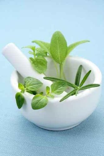 Herbs - 18