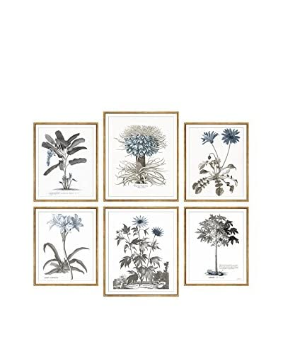 6-Piece Wall Art Collection, Traditional Botanicals