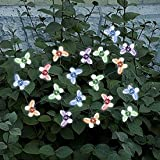 Smart Solar 3705MR20 Solar Light String, 20 Multi Color LEDs with Translucent Butterfly Covers
