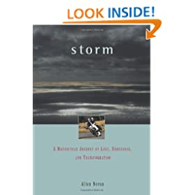 Storm: A Motorcycle Journey of Love, Endurance, and Transformation (Travelers' Tales Footsteps)