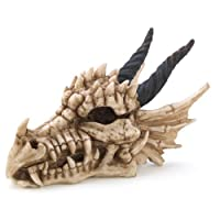 Snarling Magical Dragon Skull Treasure Trinket Box by Furniture Creations