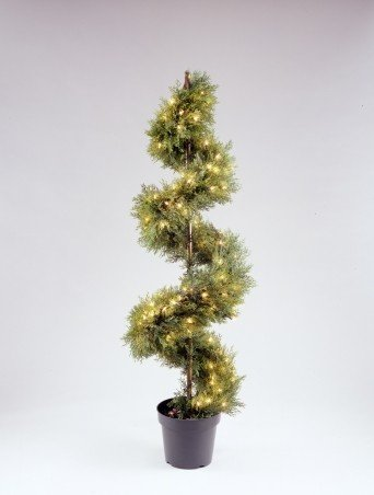 National Tree Company LCYSP-300-60 60 Inch Upright Juniper Slim Spiral Tree with Artificial Natural Trunk with 150 Clear Lights in Green Round Plastic Pot