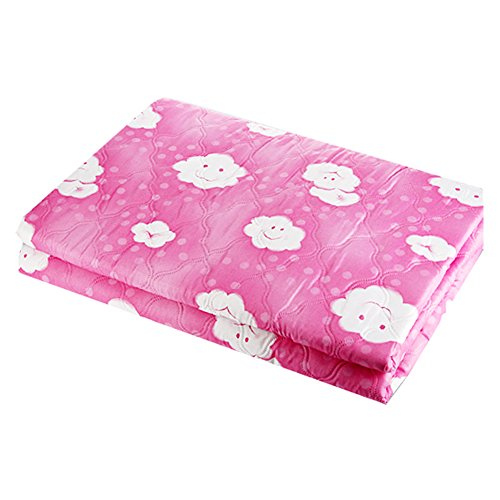 "Electric Blankets Cloud Pink 9-Step Heated Control For Single 41.3 X 70.9"" Ac100~220V (0535)"