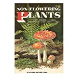 NON-FLOWERING PLANTS-A GOLDEN NATURE GUIDE-(OVER 400 SPECIES IN FULL COLOR)